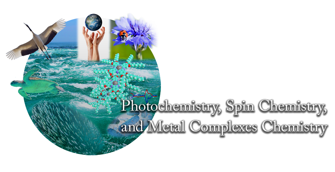 Photochemistry, Chemistry, and Metal Complexes Chemistry